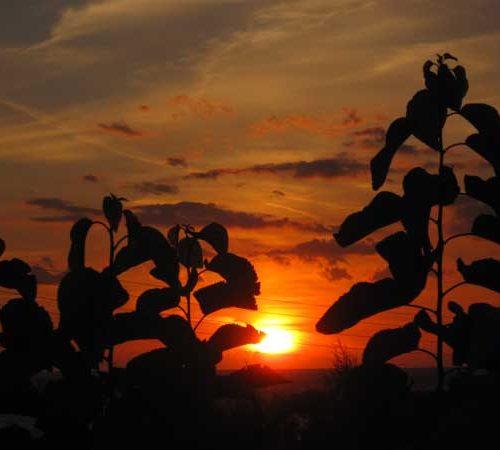 Die Sonne geht unter in Kreta