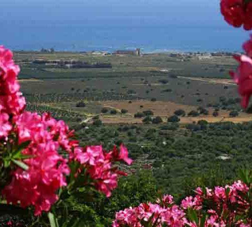 Frühling auf Kreta Blick über Sfakia