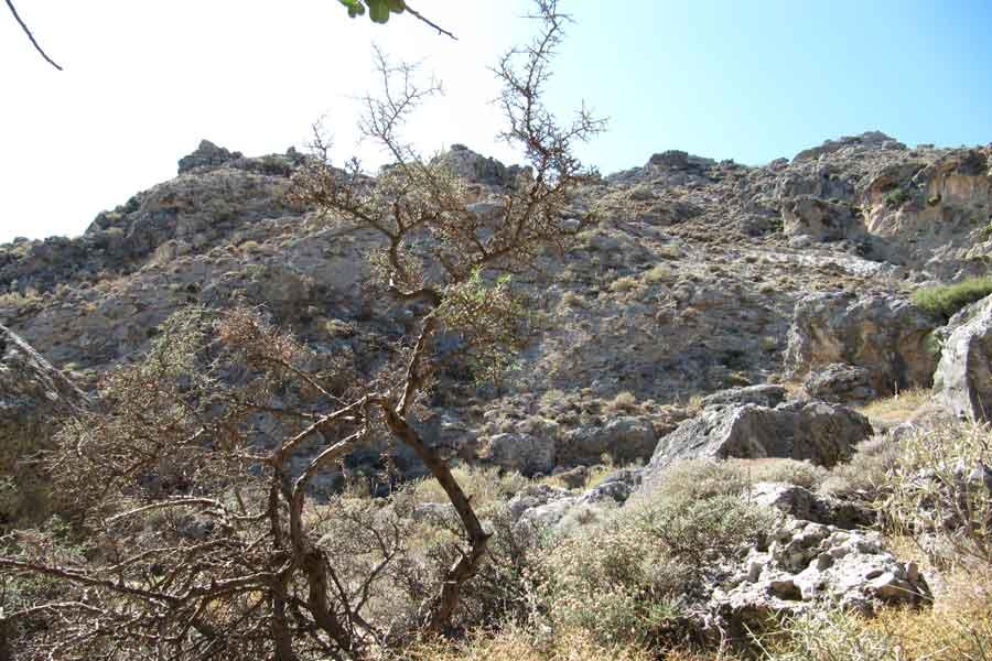 Kallikratis Schlucht Wandern auf Kreta